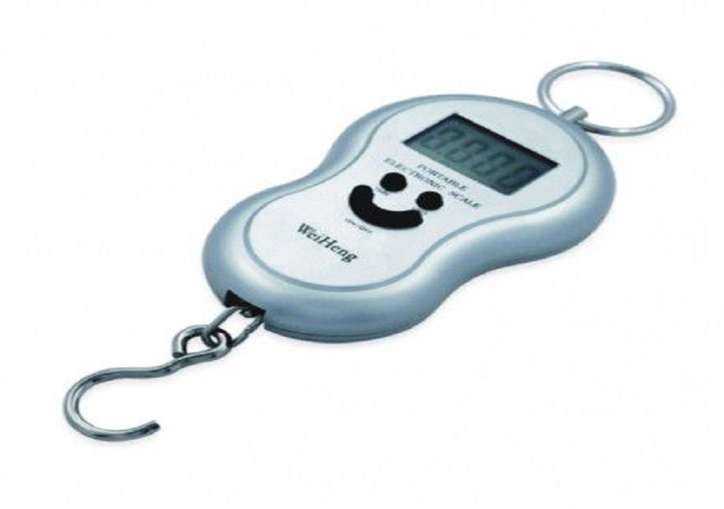 Portable Electronic Digital Weighing Scale